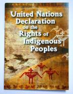 UN-Declaration_1
