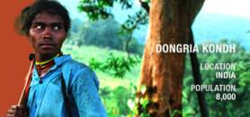 dongria-profile_cropped
