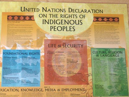 un-indigenous-peoples-poster-1